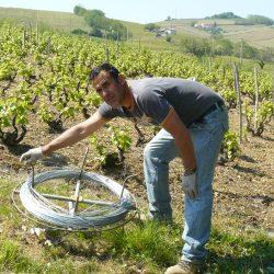 Frédéric DESCOMBES vigneron coopérateur à Juliénas