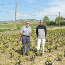Martial GRAND vigneron coopérateur à La Chapelle de Guinchay