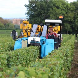 Franck DURAND vigneron coopérateur à Chaintré