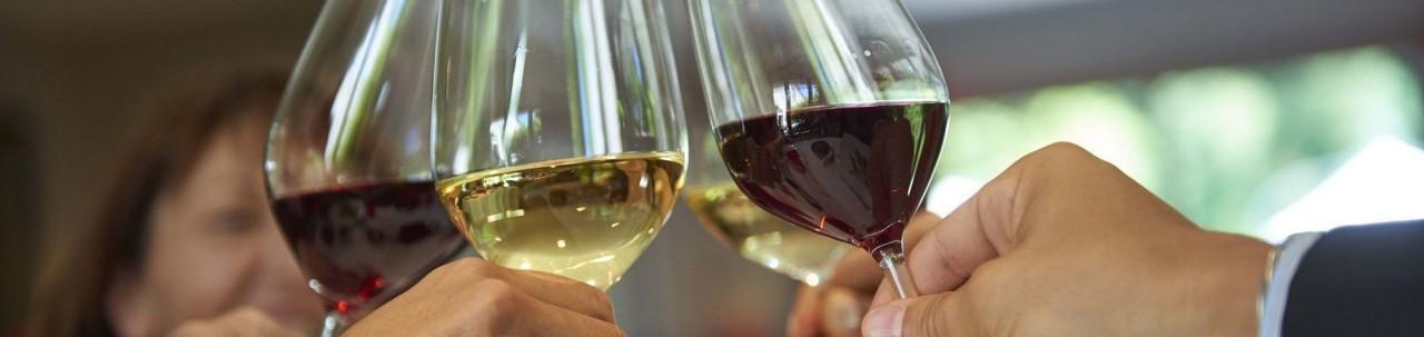 Nos vins en Bag in Box - fontaine à vins