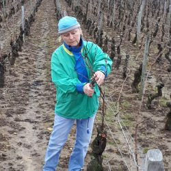Marie Hélène ROBERT vigneron coopérateur à Chaintré